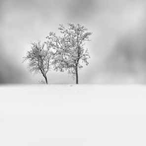 Snowscapes-Photography-9